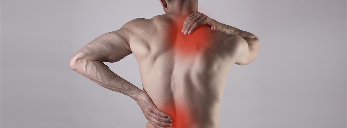 Muskel & ledvärk