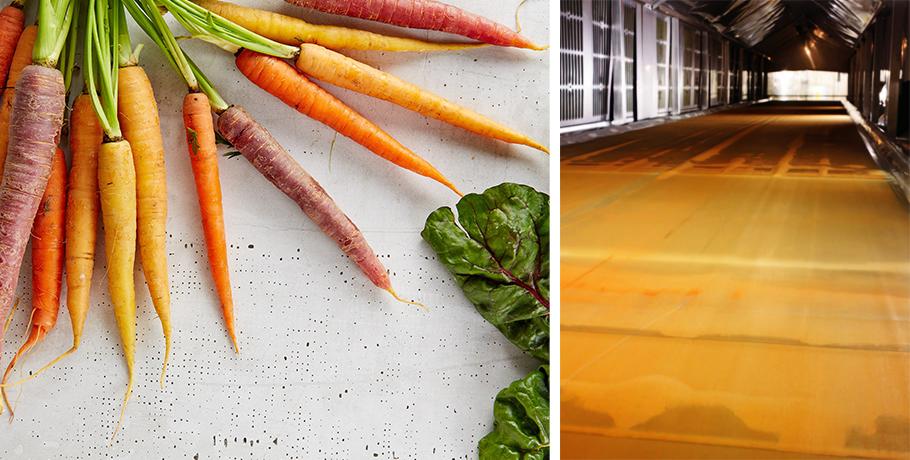 Hur torkas whole food och superfoods?