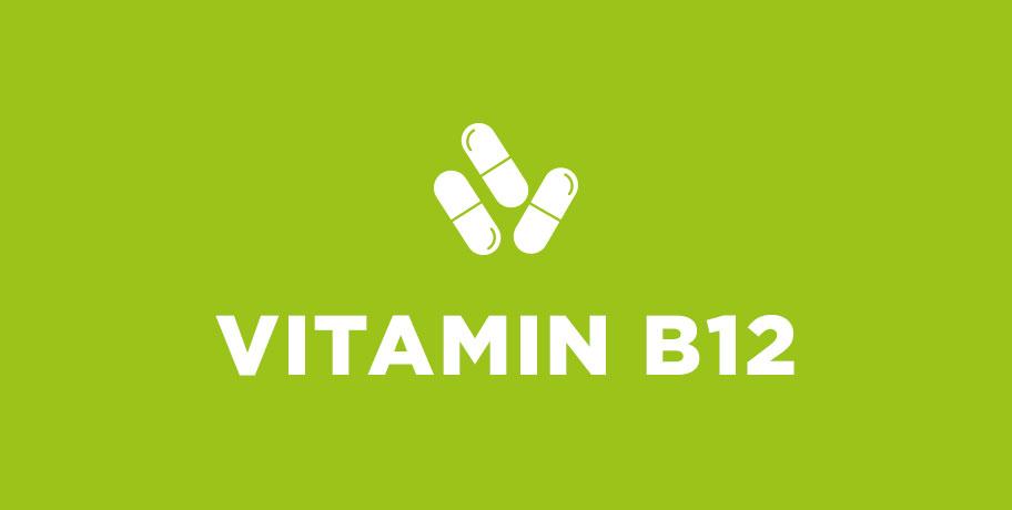 Fakta och Myter – Vitamin B12